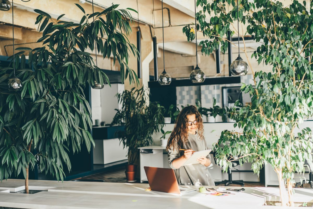 Freelancer,Woman,Using,Laptop,At,Comfortable,Office,,Green,Co-working,Modern